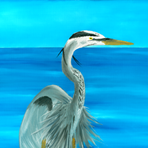 A blue heron hunting along the water's edge.